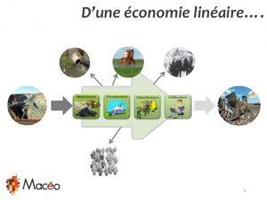 economie lineaire